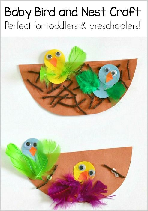 Nest and Baby Bird Craft.