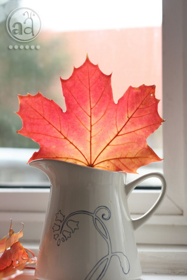 Preserve Leaves with Hot Wax and Remain the Beautiful Color.