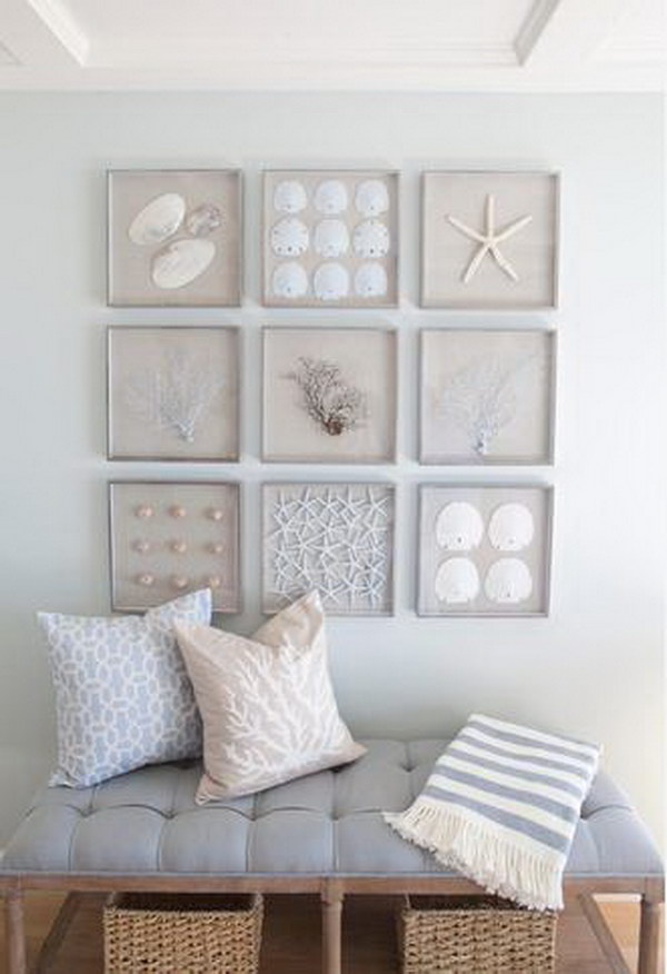 A Collection Of Framed Starfish, Sand Dollars, Seashells And Sea Fans For Nautical Wall Art
