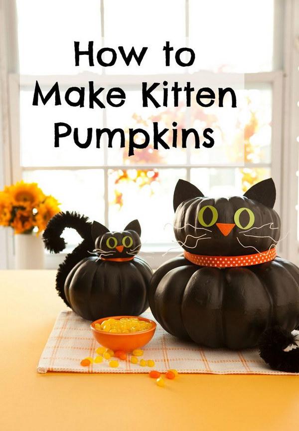 Halloween Black Cat Pumpkins.