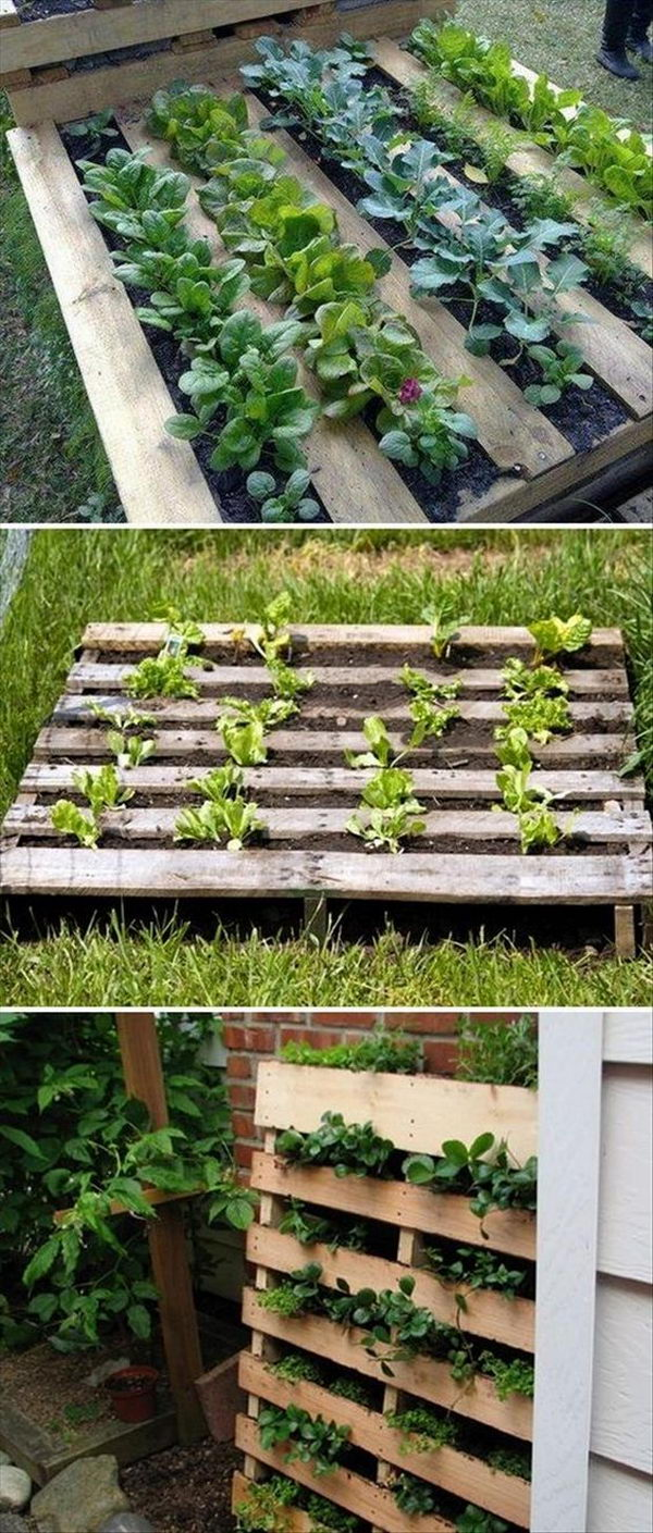 DIY Pallet Garden You Can Make In 7 Easy Steps.