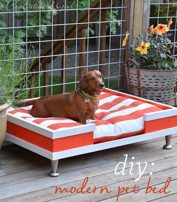 DIY Modern Wood Pet Bed.
