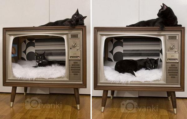 DIY  Vintage TV Turned Stylish Cat Bed.
