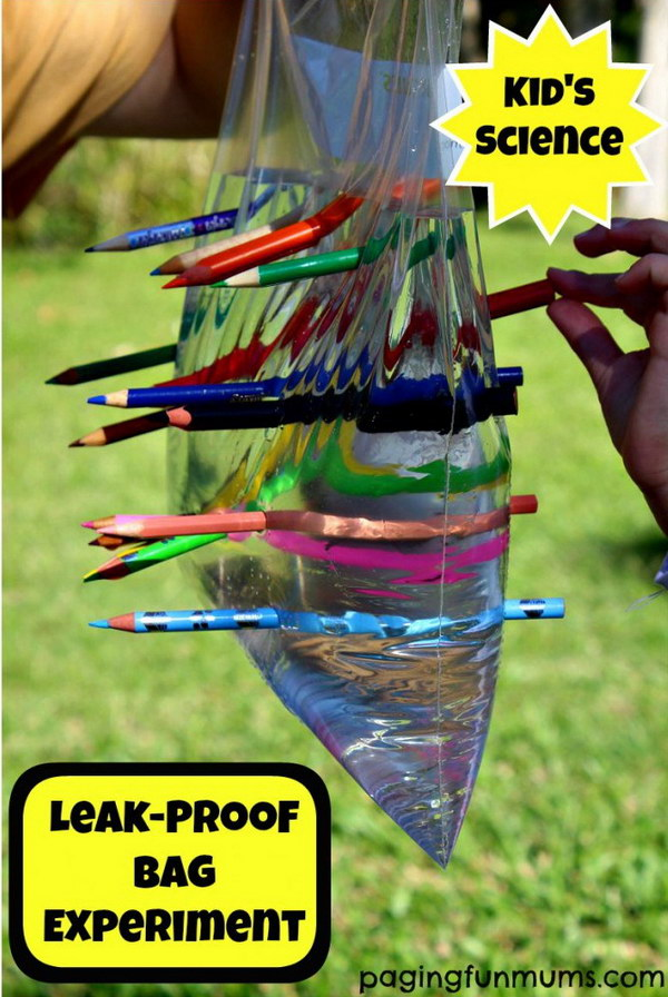 Leak-Proof Plastic Bag – Kid's Science Experiment.