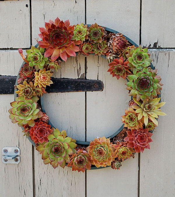 Tire Used As Base For Succulent Wreath.