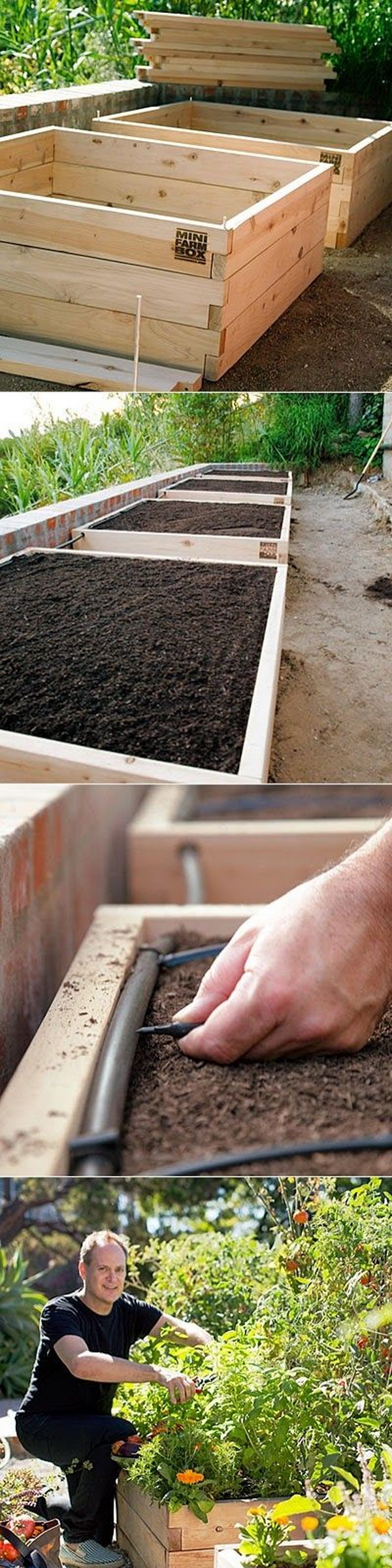 Self-Watering Raised-Bed Vegetable Garden.