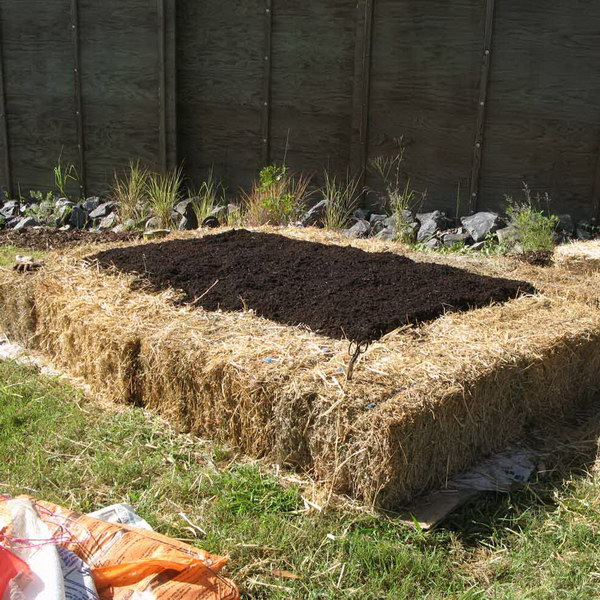 No-Dig Straw Bale Raised Garden Bed.